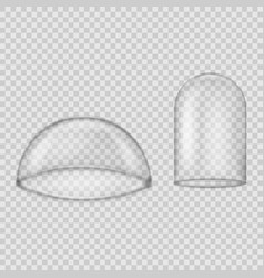 glass dome isolated on transparent background vector image
