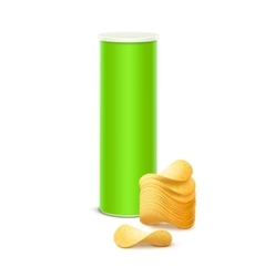 Green tin box container tube with chips vector