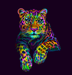 Leopard jaguar abstract graphic colorful vector
