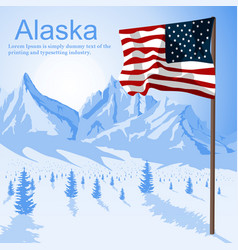 usa american flag stars and stripes in alaska vector image