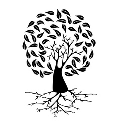 Young Tree with roots silhouette vector image