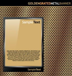gold metal plate vector image vector image