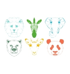 Isolated Wild animal heads vector image vector image