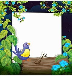 A bird and a white board vector image