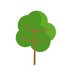 cartoon tree natural environment eco image vector image