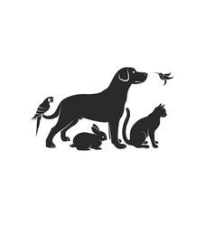 group pets - dog cat humming bird parrot vector image