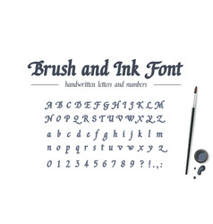 Hand drawn alphabet written with brush pen and ink vector