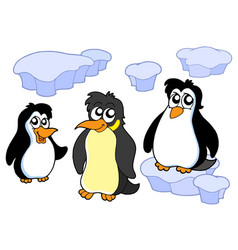penguins collection vector image