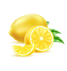 realistic yellow lemon fruit with leaf vector image