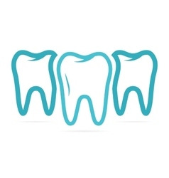 Set of three teeth on white background vector image