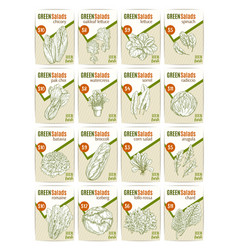Sketch price cards for salads vetables vector