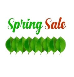 Spring Sale Poster With Leaf vector image