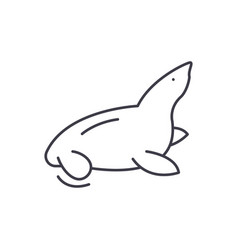 fur seal line icon concept fur seal linear vector image
