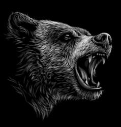 growling bear monochrome portrait a brown bear vector image