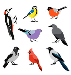 set of winter birds flat design birds icon vector image