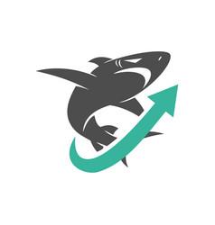 shark arrow up logo design isolated template vector image