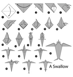 Step instructions how to make origami a swallow vector