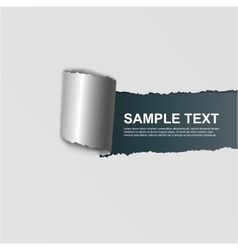 ripped white paper on dark background vector image