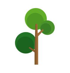 cartoon tree natural foliage woody image vector image vector image