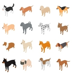 Dog icons set isometric 3d style vector image
