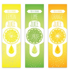 Lemon lime and orange fresh juice label template vector image