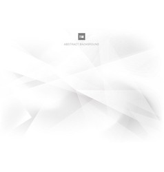 Abstract background modern white and gray vector