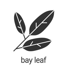 Bay leaves glyph icon vector