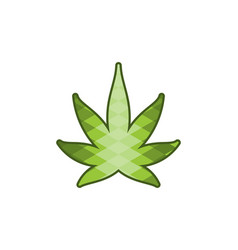 Cannabis leaf logo designs inspiration isolated vector