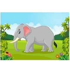 Cartoon animal elephant vector