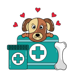 dog with bone and medical kit pet veterinary care vector image