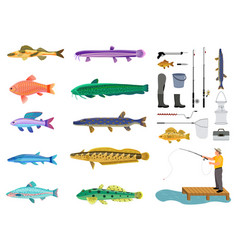 fishes set and fishing tools collection color card vector image