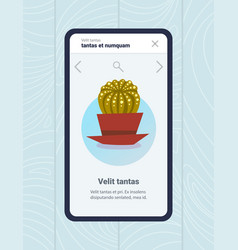 mobile app house plants care smartphone screen vector image