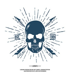 Skull with Crossed Arrows isolated on white vector image vector image