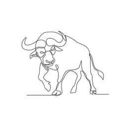 african buffalo continuous line vector image