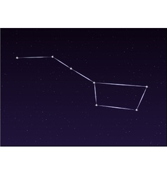 Big Dipper Constellation vector image