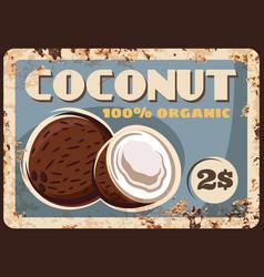 coconut nut metal rusty plate farm market price vector image