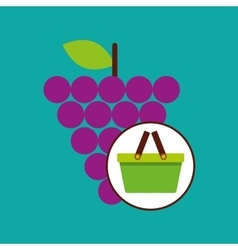 Green basket fresh grape design icon vector