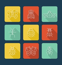 Insects With Shadow vector