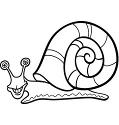 Snail mollusk cartoon for coloring book vector