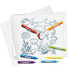 A paper with the different sea creatures vector