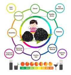 Amazing health benefits of blackberries vector