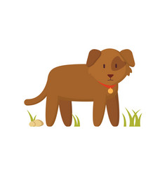 Brown dog with red collar cartoon character poster vector