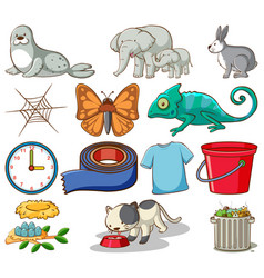 Set different animals and other home items vector