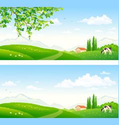 summer farm pasture vector image