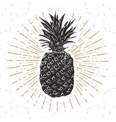 vintage label hand drawn pineapple grunge vector image vector image