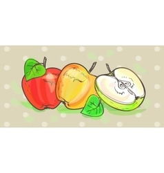 Apples retro art set vector image