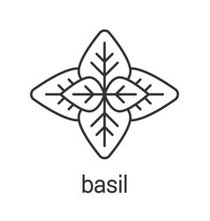 Basil linear icon vector