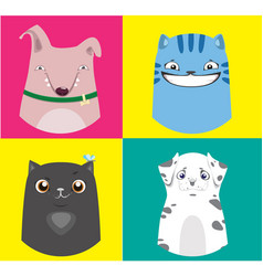 cartoon dogs and cats collection vector image