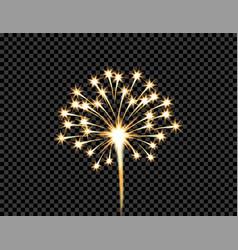 festive golden firework salute burst flash on vector image