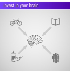 invest in your brain Infographic elements for web vector image